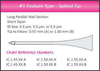 icsi feature type 4